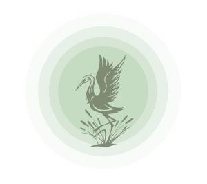 jade-sun-logo-birdsun